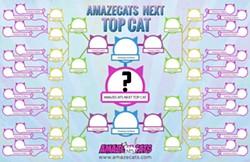 nexttopcat.jpg