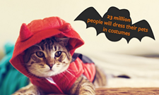 CAT FRIDAY: Announcing the second annual Halloween Cats Photo Contest