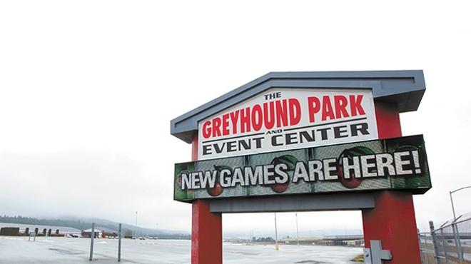 betting zone greyhounds