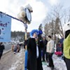Polar Bear Plunge in Coeur d'Alene Photos