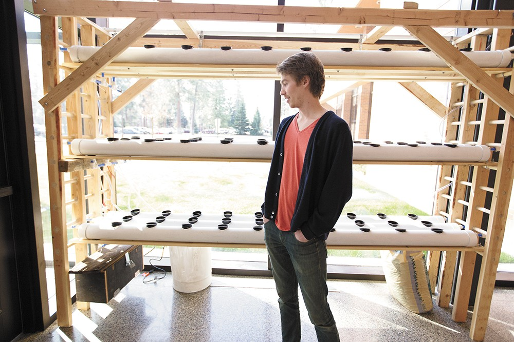 Chris Grochowski with a hydroponic system at Whitworth's Hixson Union Building. - YOUNG KWAK