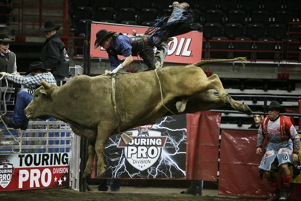 Dakota Beck, of Moses Lake, Wash., falls off 804 Mr. Buddy during the Championship Round, on Saturday. He rode 4.39 seconds before falling off the bull. Beck won the overall event with a score of 179 from the previous night. - YOUNG KWAK