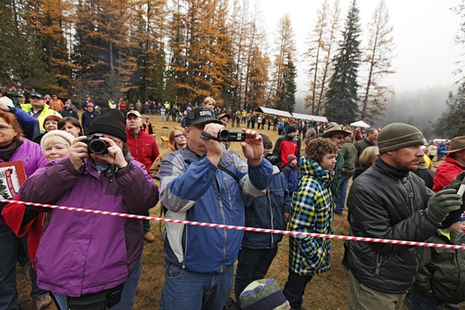 Debbie Lutz, left, and her husband Bob photograph and film during the cutting of an 88-foot Engelmann Spruce, destined to be the U.S. Capitol Christmas Tree. - YOUNG KWAK