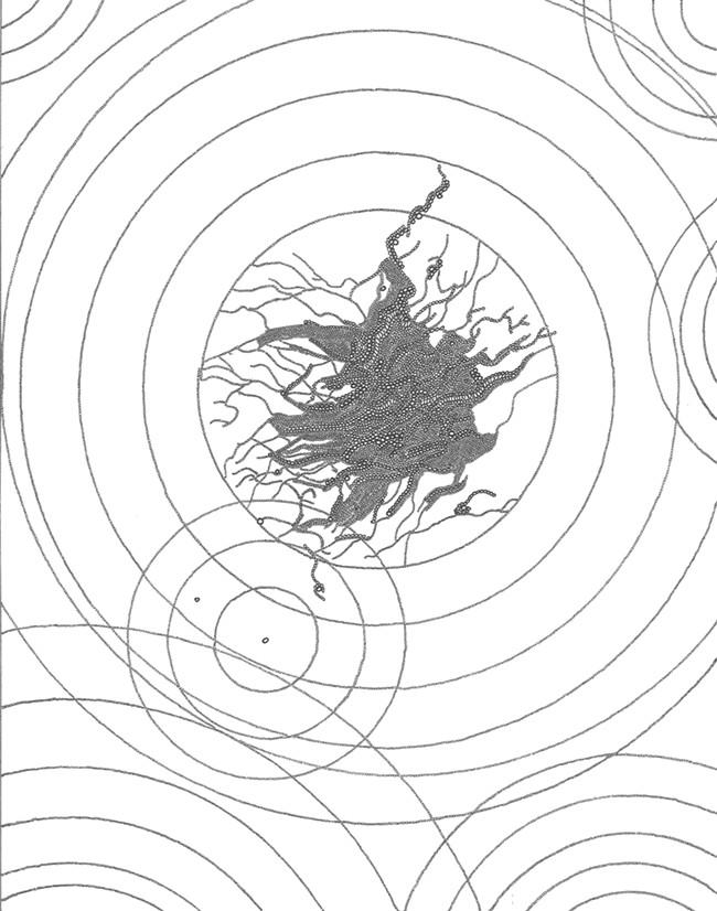 "Devon Plopper's ""Black & White Series #4."""