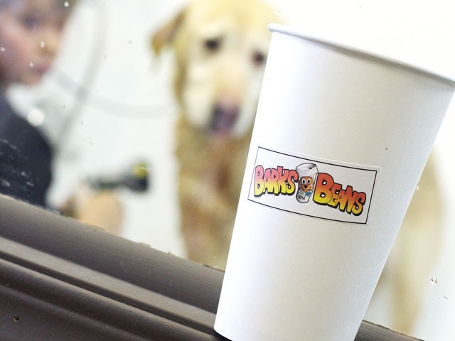 Drink a coffee, wash your dog. - YOUNG KWAK