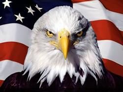 eagle_and_american_flag.jpg