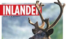 Feds will continue protecting woodland caribou