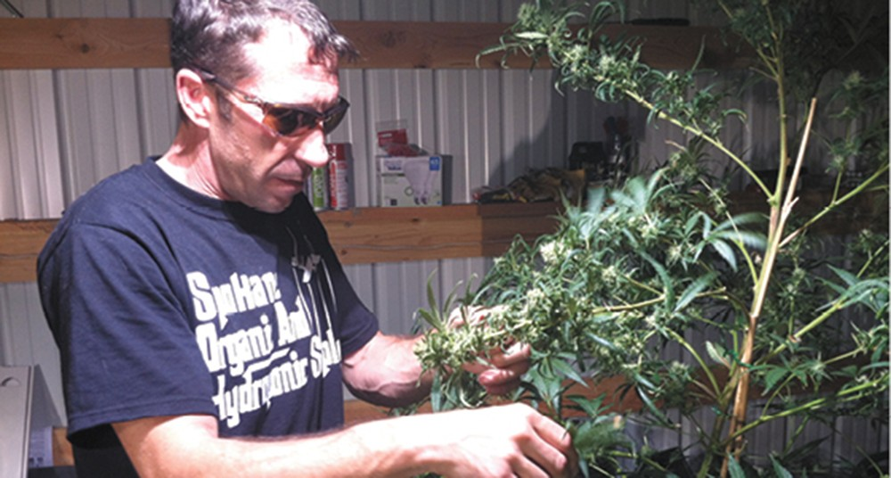 Frank Schade, owner of Green Surfer - DEANNA PAN PHOTO