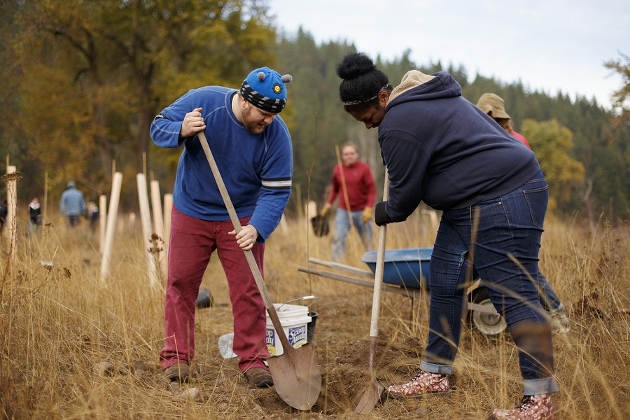 Galen Hume, left, and Shontae Elliot dig a hole to plant a tree. - YOUNG KWAK