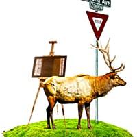 How to avoid drink lines this Elkfest/Artfest weekend