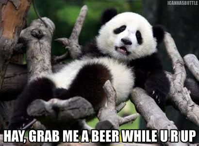 090108_panda_beer.jpg
