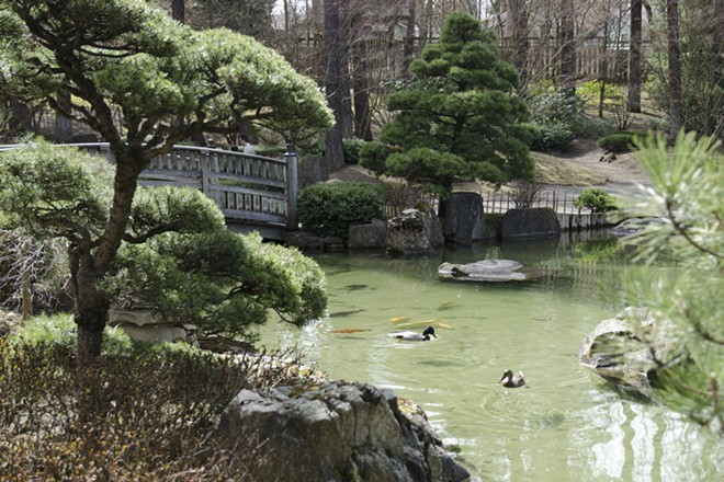 The Nishinomiya Japanese Garden in Manito Park opened for the season this week. - LISA WAANANEN