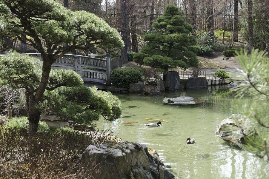 The Nishinomiya Japanese Garden in Manito Park opened for the season this week. - LISA WAANANEN