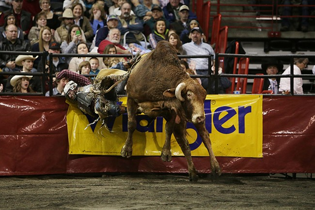 John Smith, of Malta, Mont., crashes into a fence after falling off K152 Crazy Eyes, during Flight 2, on Saturday. He rode 3.33 seconds before falling off the bull. - YOUNG KWAK