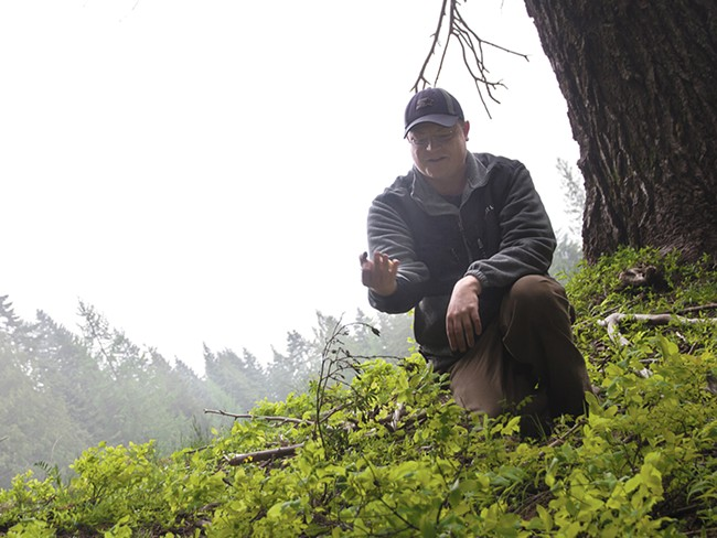 Josh Yake scours the wilds of the Inland Northwest for morel mushrooms. - JENNIFER DEBARROS