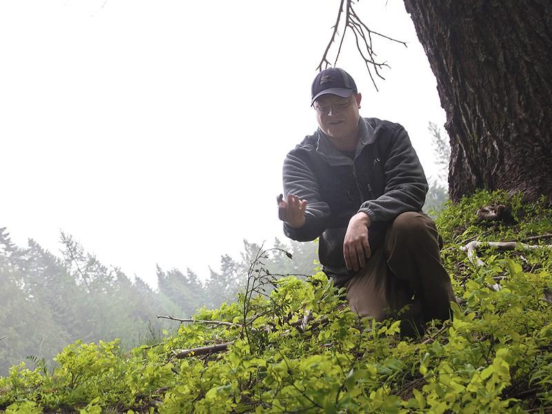 Josh Yake scours the wilds of the Inland Northwest for morel mushrooms. - JENNIFER DEBARROS