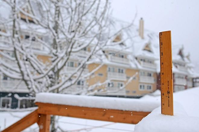 Plenty of new snow this week at Schweitzer Mountain. - SCHWEITZER MOUNTAIN RESORT