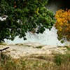 Monetizing Nature