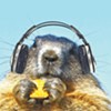 Music for More than Marmots