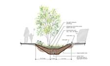 New storm gardens in Shadle neighborhood will help protect Spokane River
