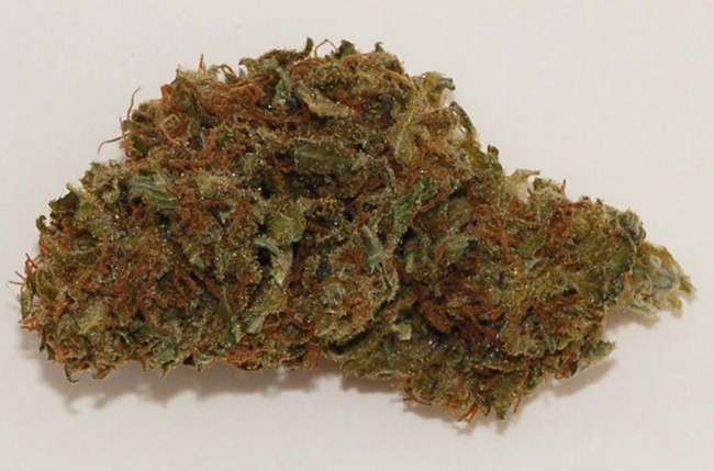 marijuana_cbd_strain.jpg