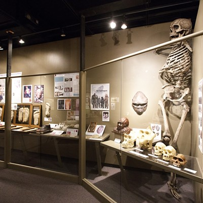 Sasquatch Items On Display