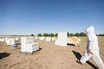 Owner Mike Durst walks into a field holding hives at Mark T. Durst and Sons.