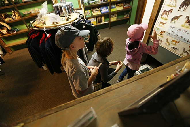 8-year-old Michele Lewis, left, her 6-year-old sister Marraine and cousin Gina Sotolongo look at a wolf chart at the Wolf People store. - YOUNG KWAK