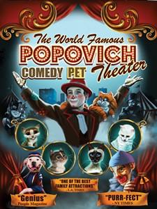 popovich_poster_02_big.jpg