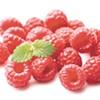 Raspberry Purée