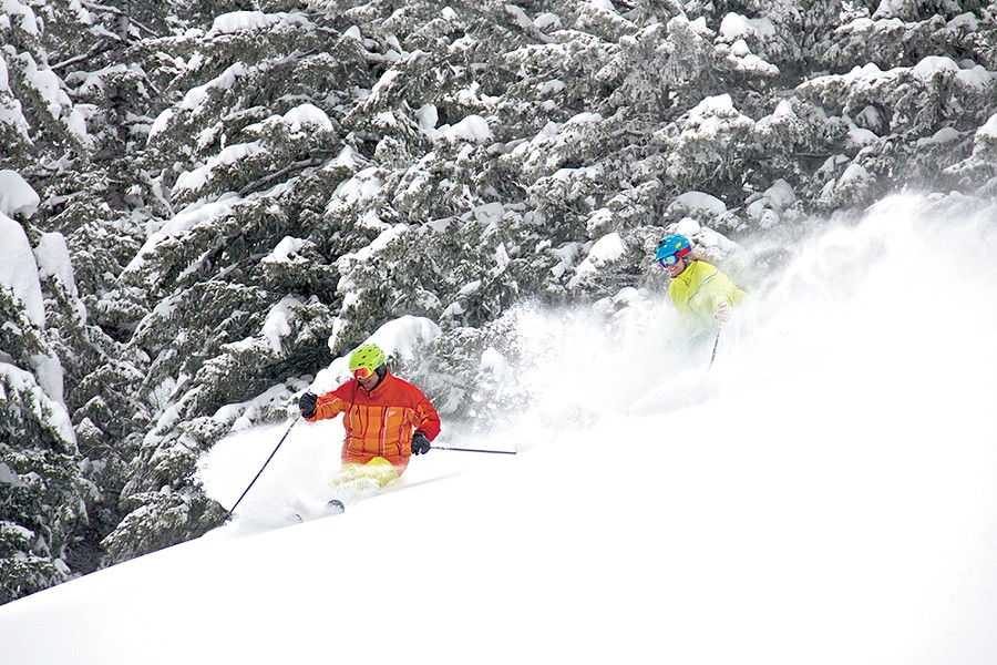 snowlander8-1.jpg