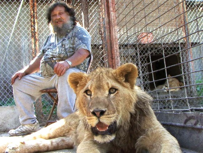 Terry Brumfield owns six lions. Is that irresponsible?