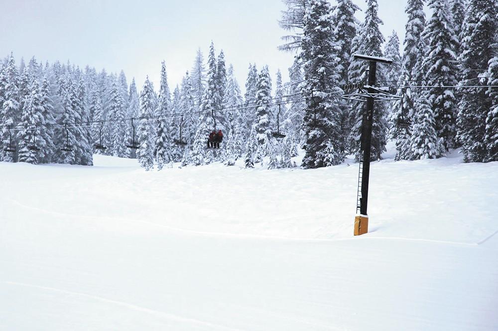 snowlander3-1.jpg