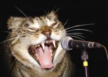 THIS WEEKEND IN MUSIC: Idols! Stone! Zoe!