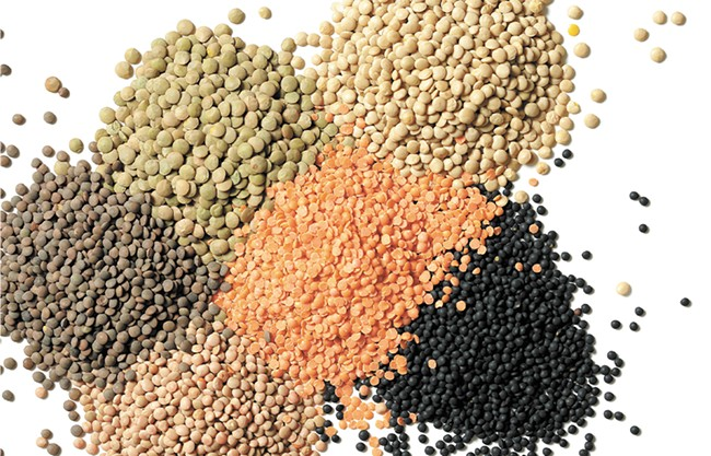 Lentils are king on the Palouse. - YOUNG KWAK