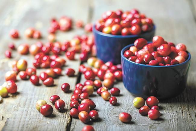 Cranberry pickers are careful to keep North Idaho's picking locations secret.