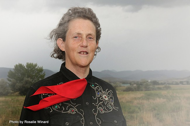 "Temple Grandin: ""One of the problems we have with 'autism' is it's so variable."" - ROSALIE WINARD PHOTO"