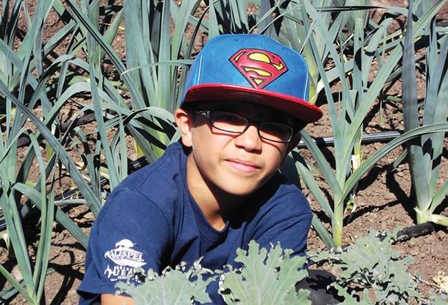 Luis Arroyo working in the garden.