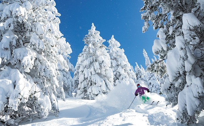 Trisha Scott shreds the North Face Glades at Silver Mountain. - WILLY BARTLETT