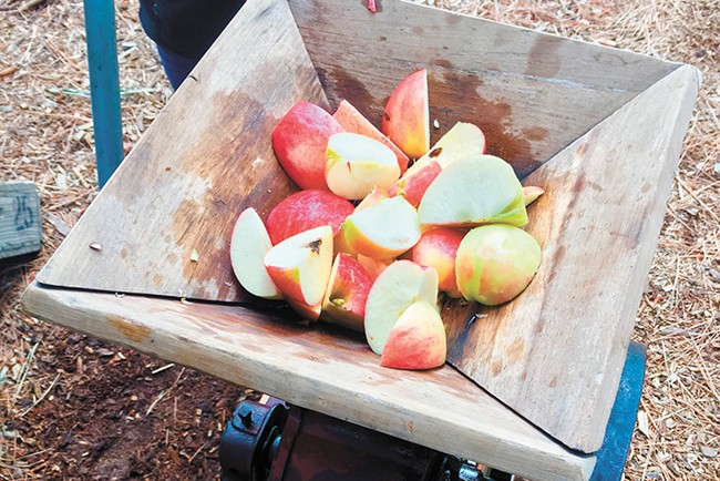 The Conley family found Red Delicious trees growing on their new property in Athol, Idaho, so they planted more trees and now operate Athol Orchards. - NIKKI CONLEY