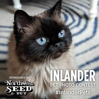 There's one day left to submit to the Inlander's first-ever Pets Issue photo contest!