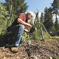 How one couple is using permaculture to transform their north Spokane County acreage into a sustainable farm