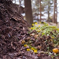 Washington moves closer to legalizing human composting, water cremation