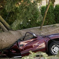 PHOTOS: Exploded trees, crushed cars, powerless people