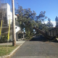City Council gets progress update addressing aftermath of windstorm