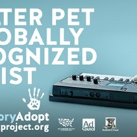 CAT FRIDAY: Spokane's Keyboard Cat stars in a national pet adoption campaign