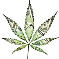 U.S. Senate could bring banking services to pot industry