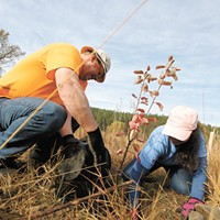Reforest Spokane Day, scaring hunger and more