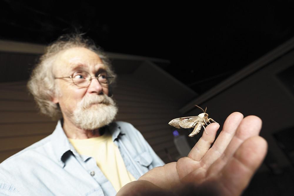 Spokane's own moth man Carl Barrentine. - YOUNG KWAK