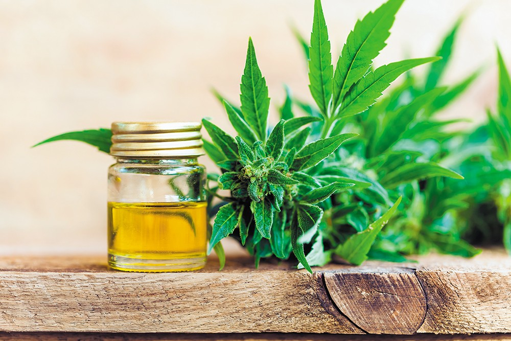 CBD sales explode as potential uses for it grow.